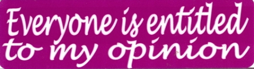 Everyone Is Entitled To My Opinion Motorcycle Helmet Sticker