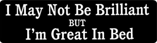 I May Not Be Brilliant But I'm Great In Bed Motorcycle Helmet Sticker