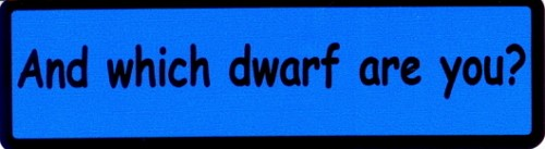 And Which Dwarf Are You Motorcycle Helmet Sticker